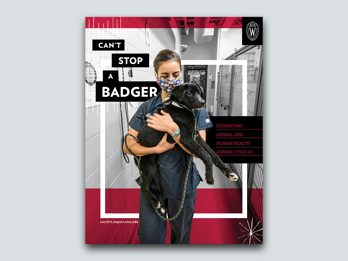 Magazine ad of person holding dog. Text: Can't Stop a Badger