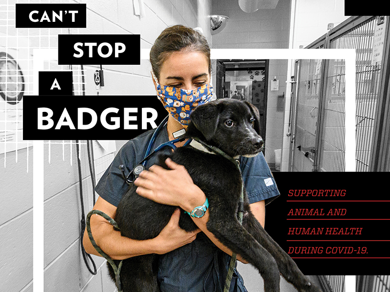 Ad with photo of person holding dog. Text: Can't Stop a Badger